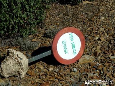 Pico Somosierra, Gran Recorrido GR88; rutas de senderismo cerca de madrid;senderismo en la pedriza
